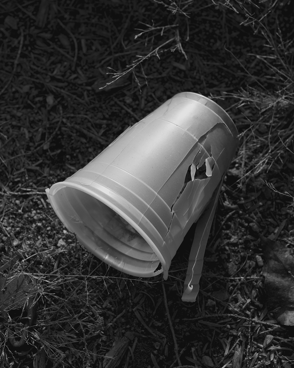 Untitled (Cup), Massachusetts, 2014