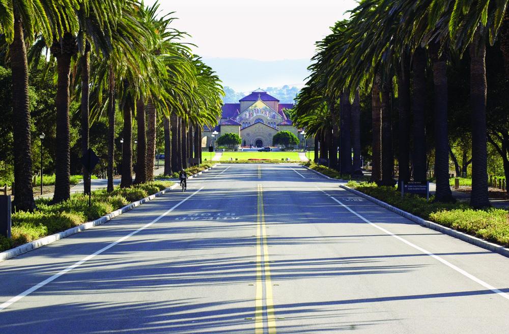 Palm Drive.jpg