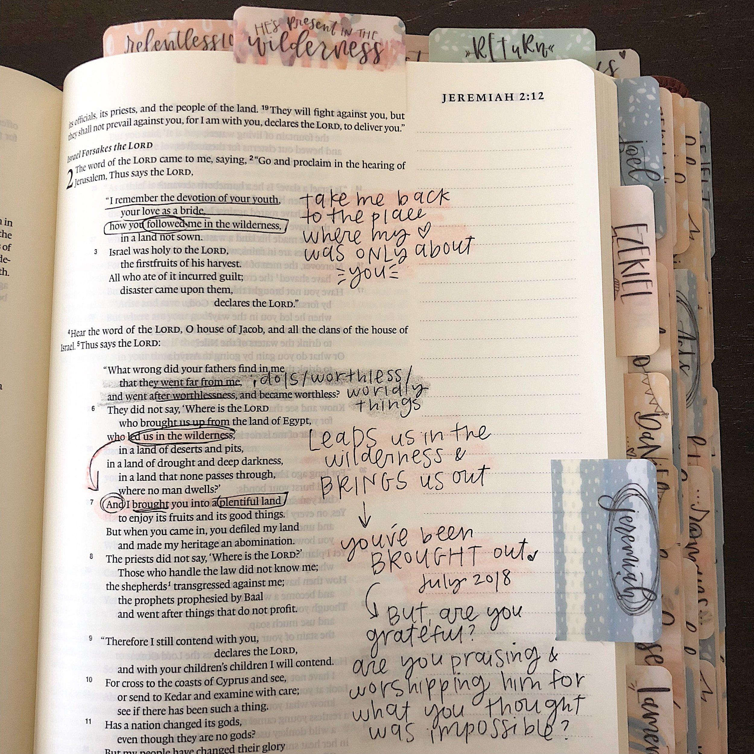 ESV Journaling Bible - Single Column Journaling Bible, 2 inch margins for journaling