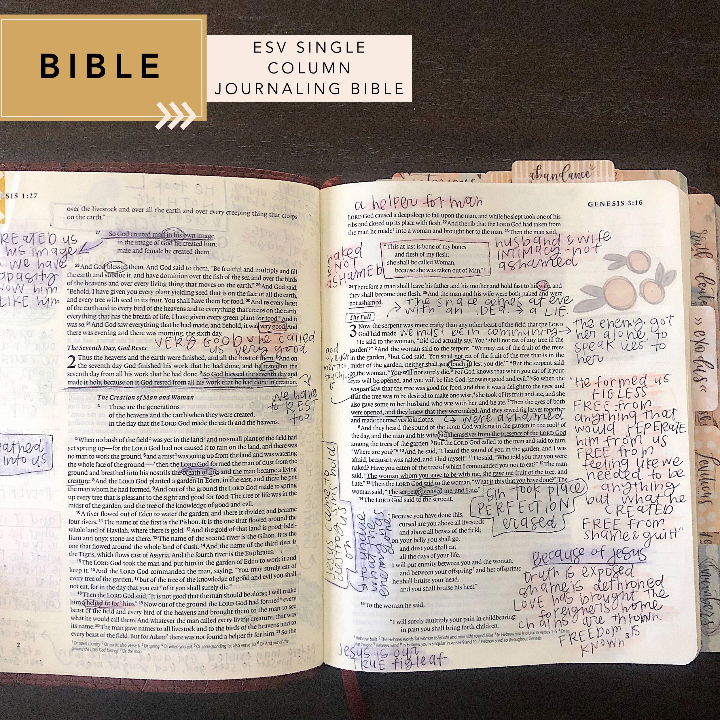 bible comparison: single column journaling bible
