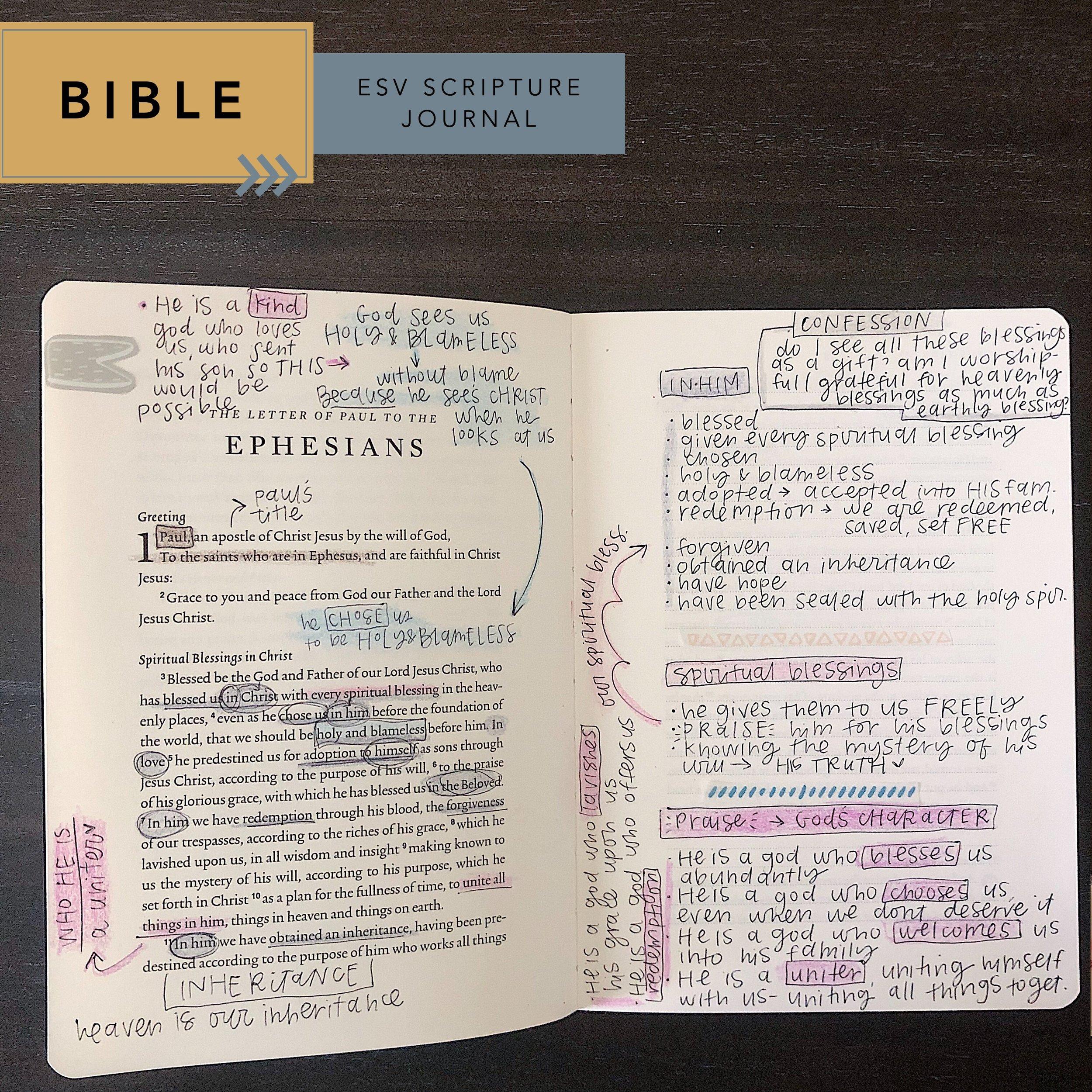 bible comparison: esv scripture journal