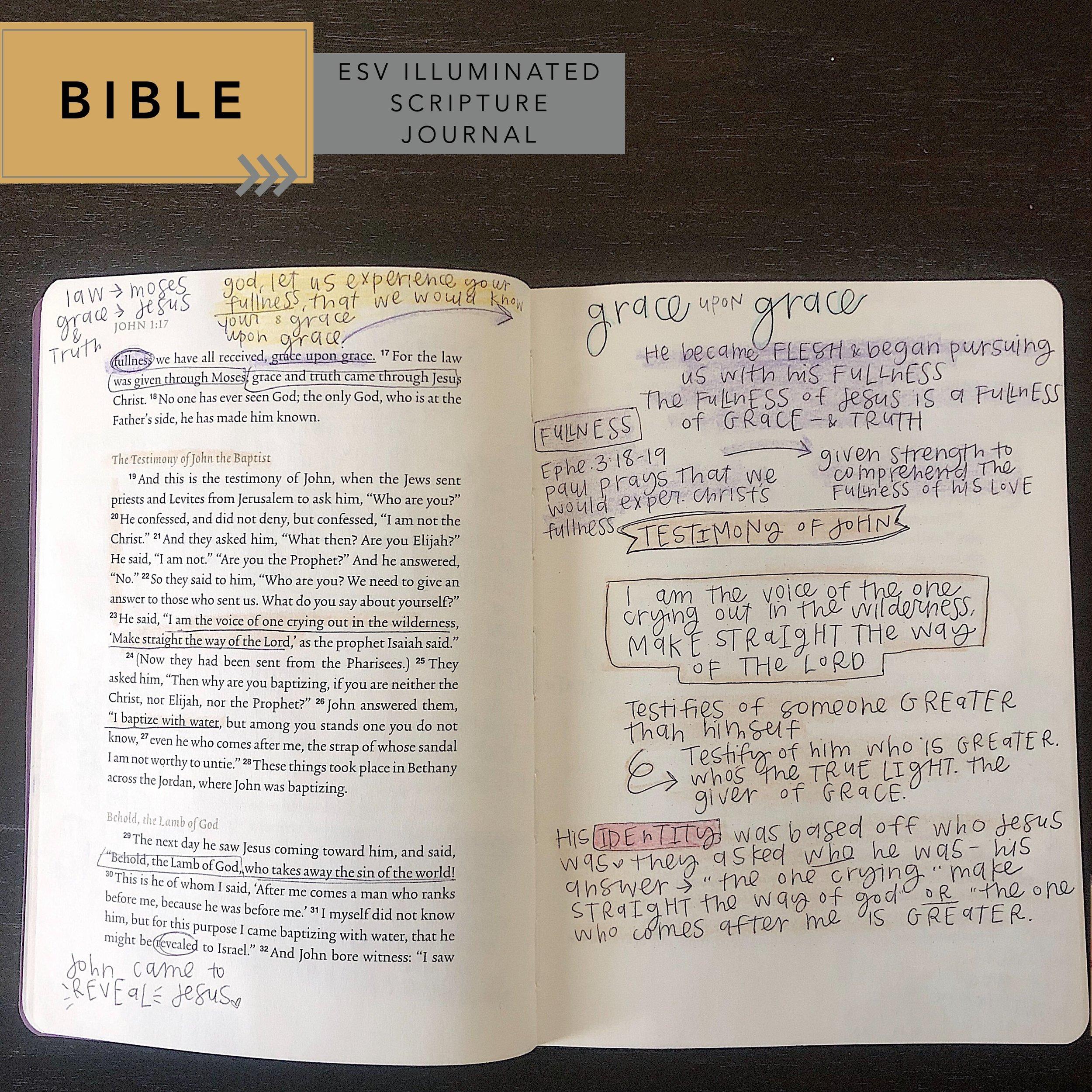 bible comparison: esv illuminated journal