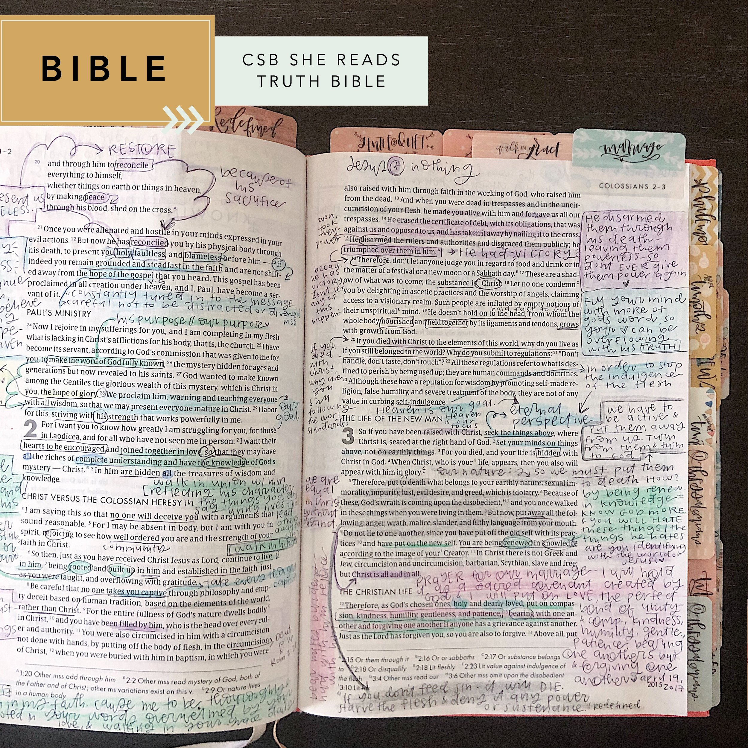 bible comparison: she reads truth bible