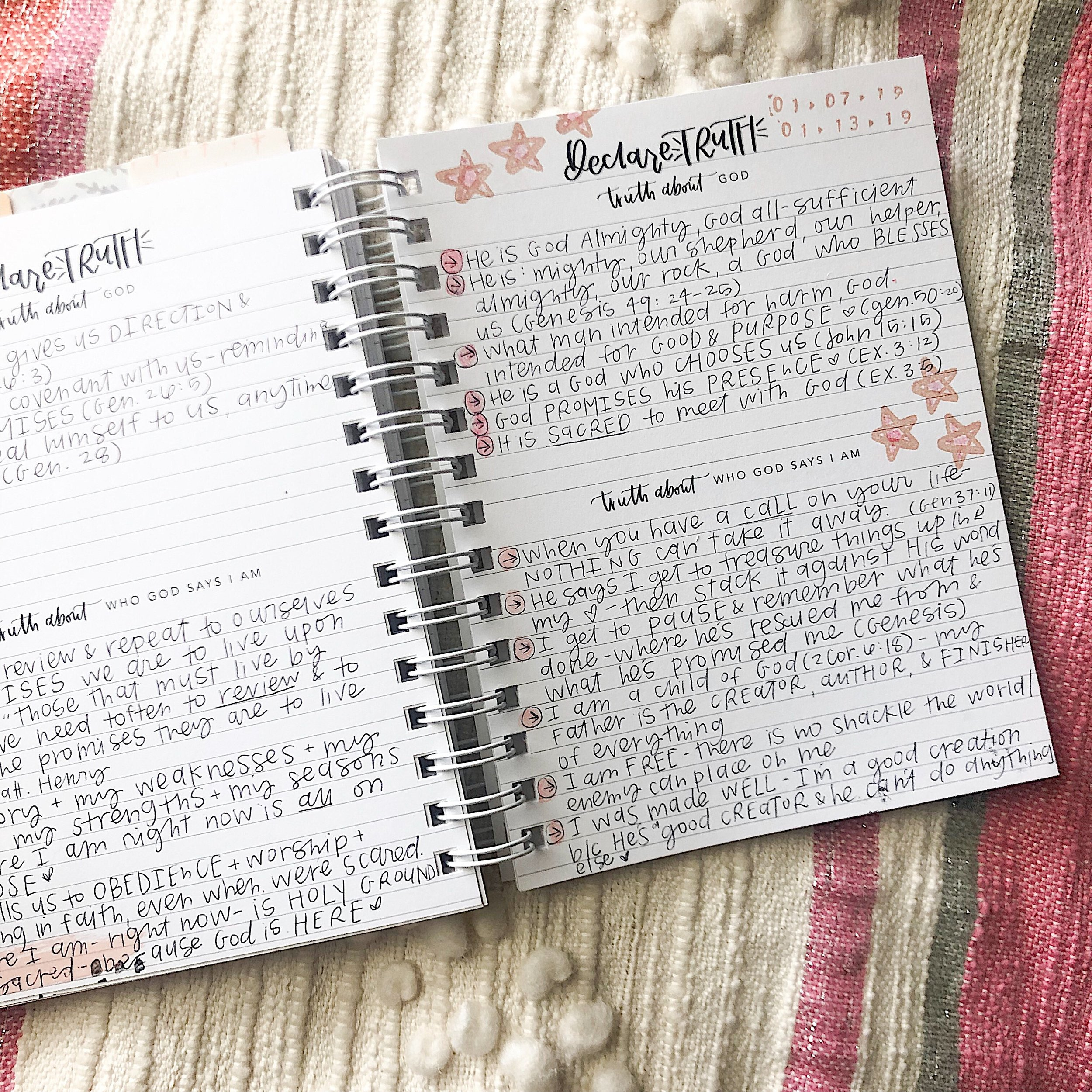 find wondrous things prayer journal, declare truth