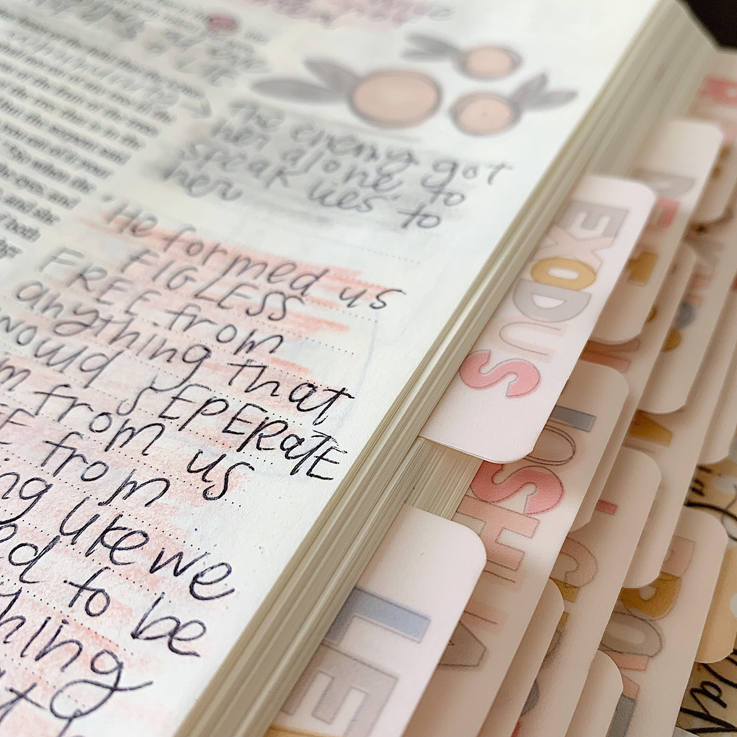 gET IN THE WORD - I believe in different seasons it is hard to get in the Word, my prayer is that these tabs would encourage you to open your Bible more, because I believe when you do, you will fall in love with Jesus all over again.