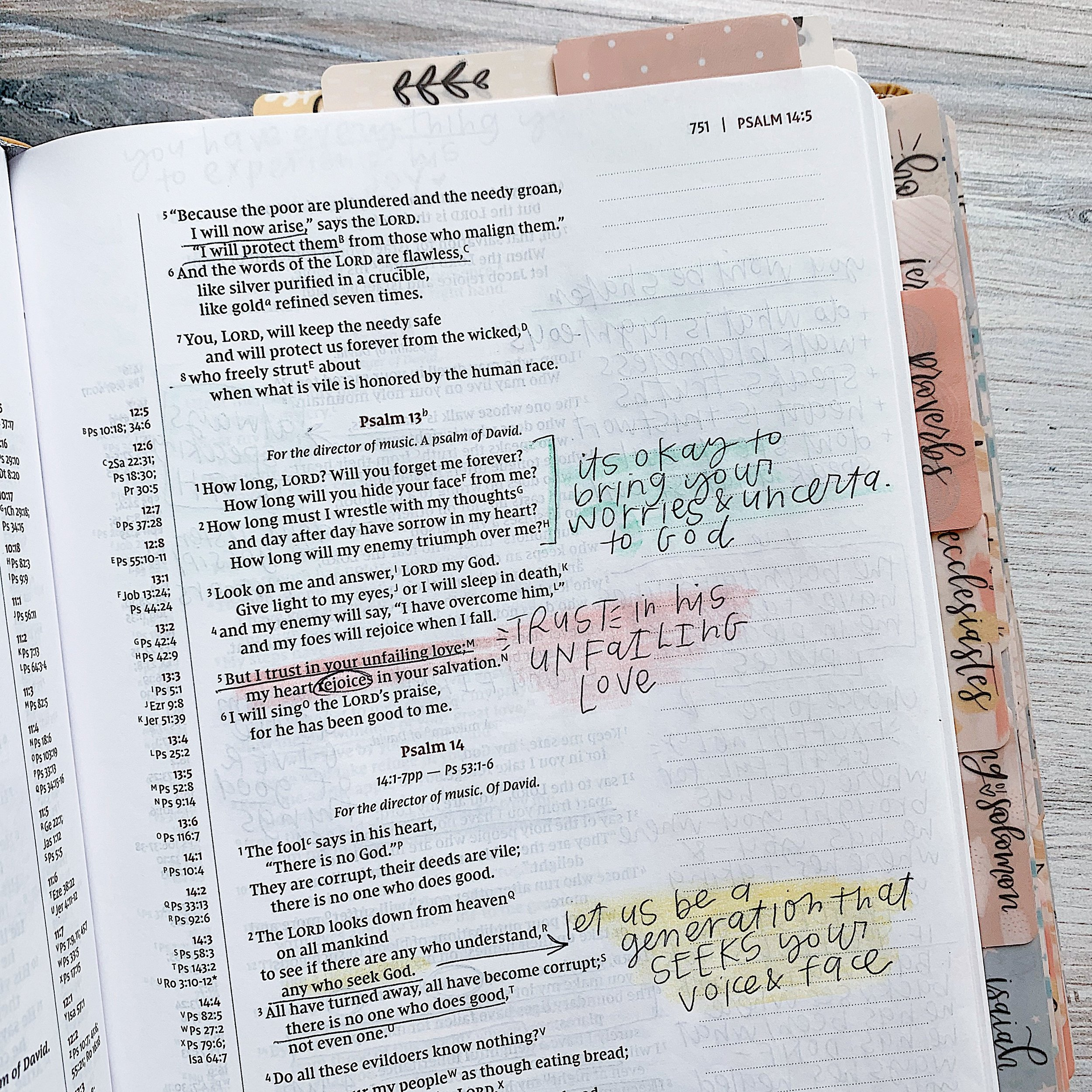 NIV JOURNAL THE WORD - Single Column Journaling Bible, 2 inch margins, Red Letter text for Jesus' words, Cross-References