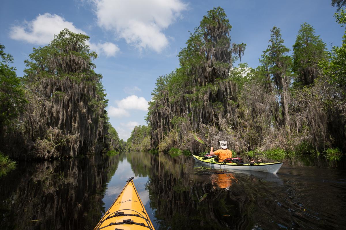 paddling the suwannee canal