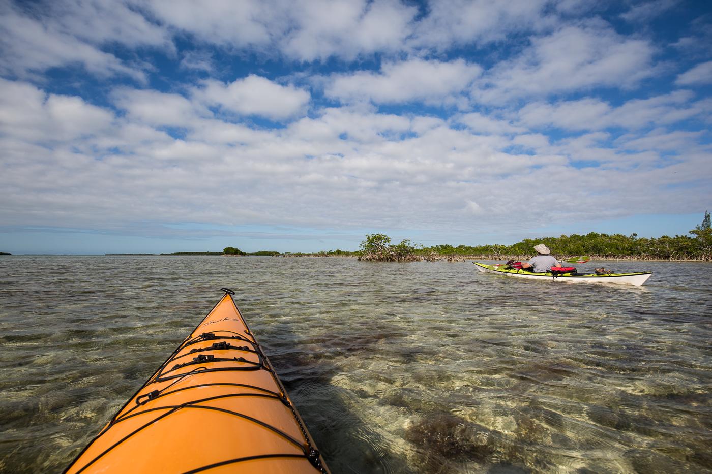 kayaking_florida.jpg