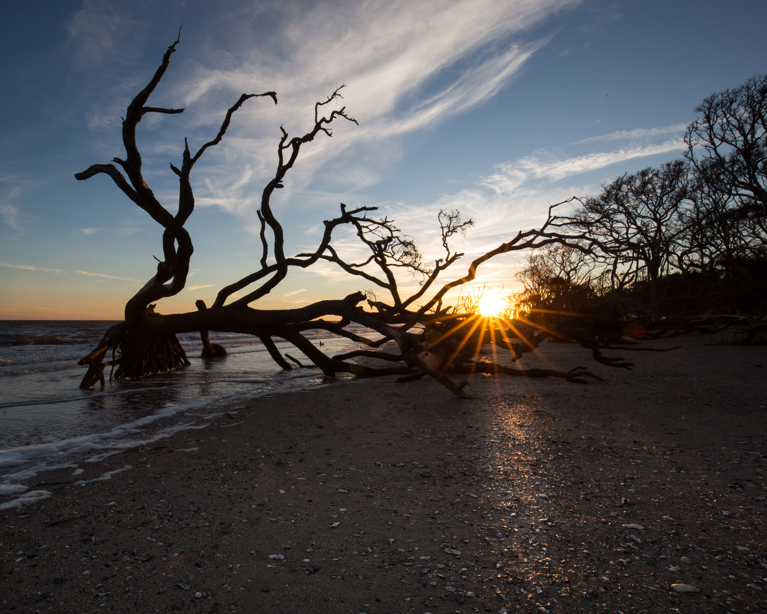 Sunset at Botany Bay Plantation wildlife preserve