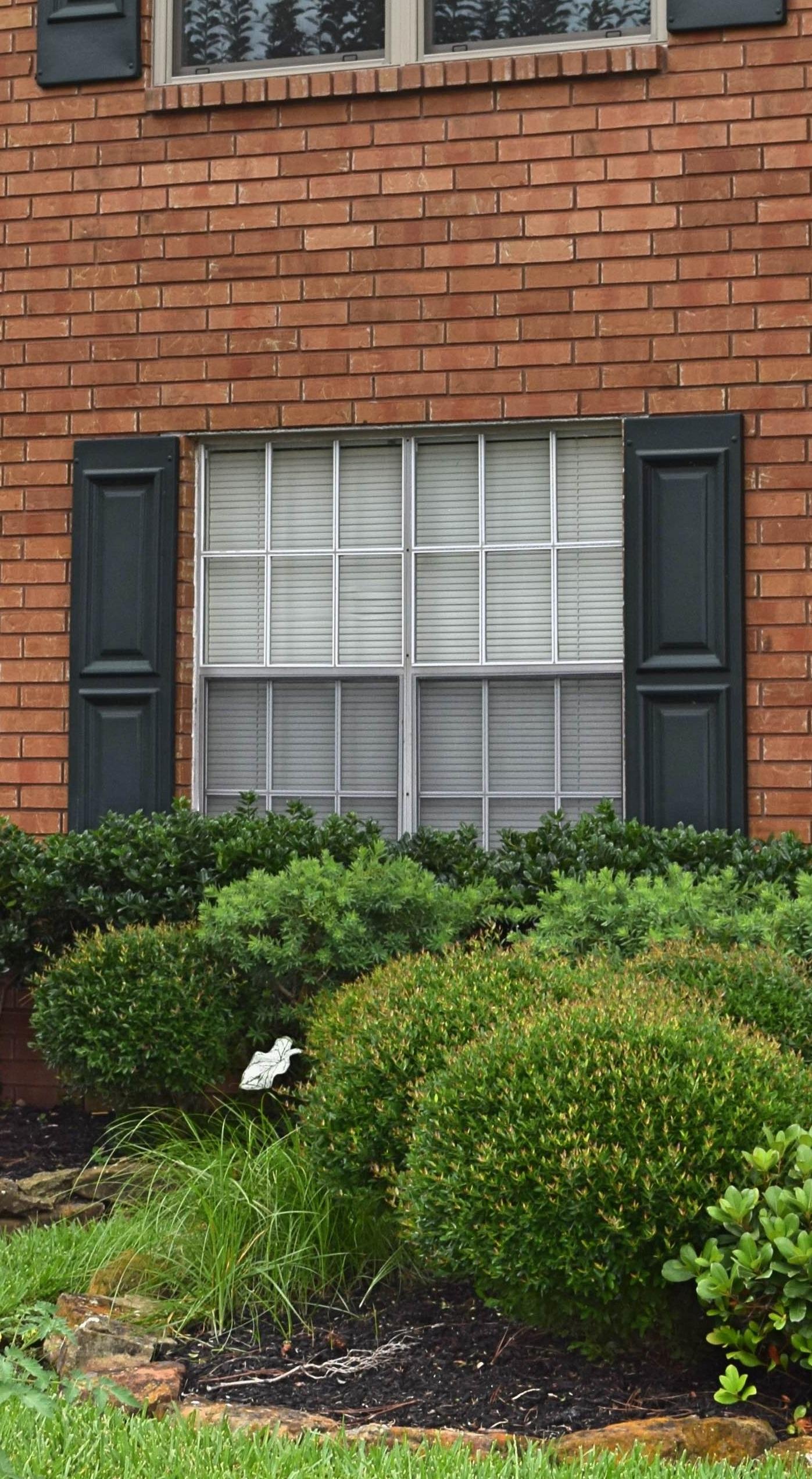 Before: Old Aluminum Windows