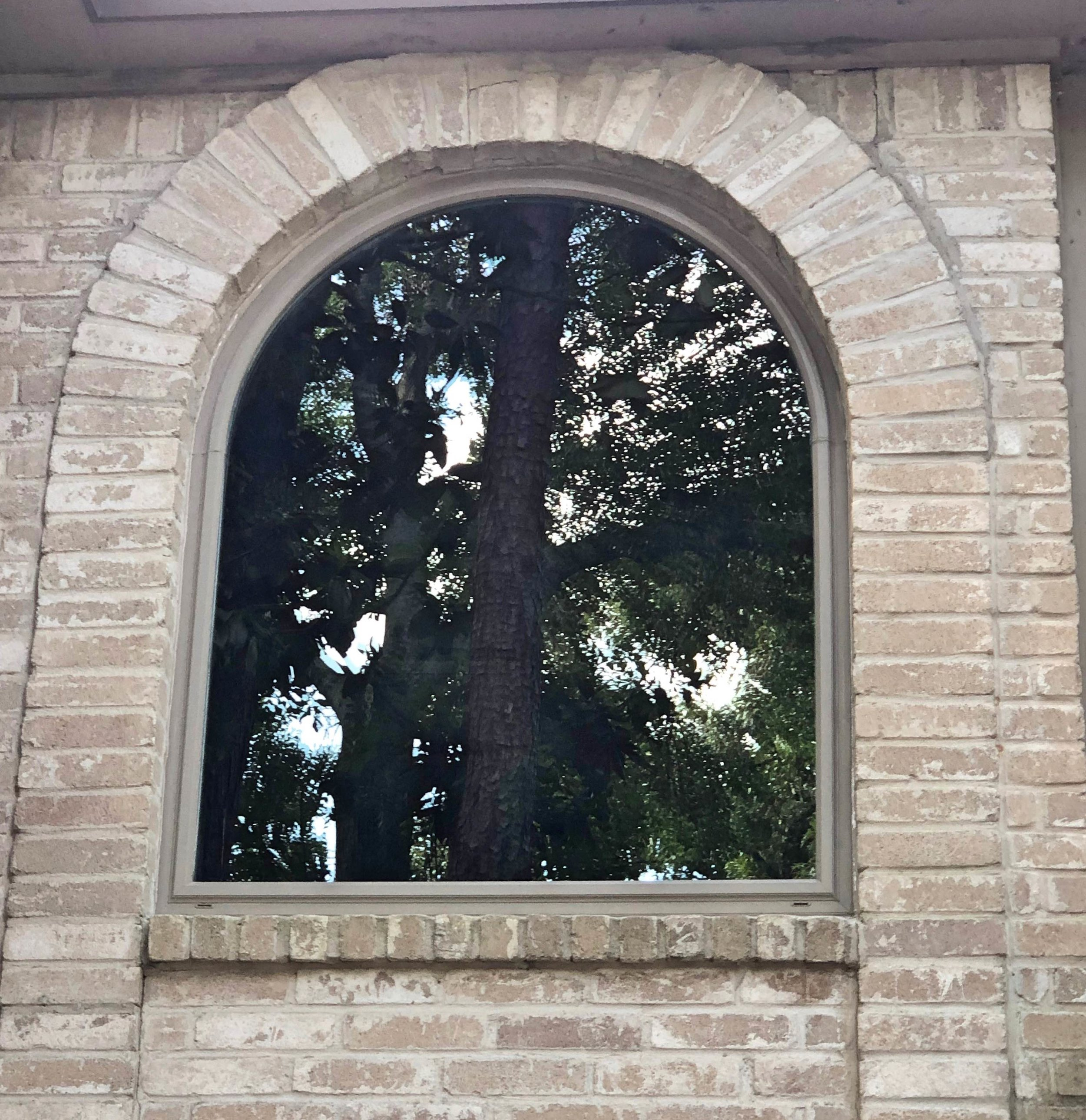 custom brown arch window.jpg