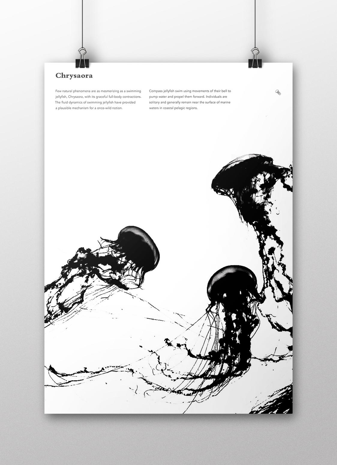poster_mockup-jellyfish.jpg