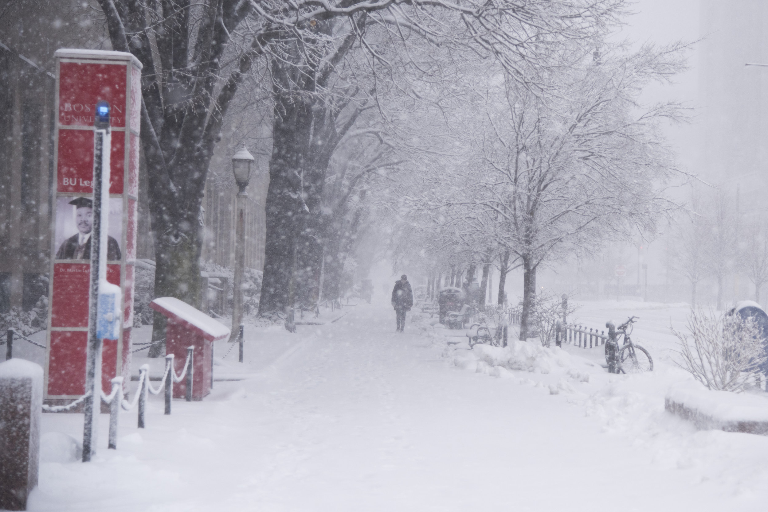 Commonwealth Avenue, usually bustling with Boston University students, becomes a snowy wonderland during New England's third nor'easter in two weeks on February 28. The storm brought blizzard-like conditions and the cancellation of classes at Boston-area colleges and public schools.