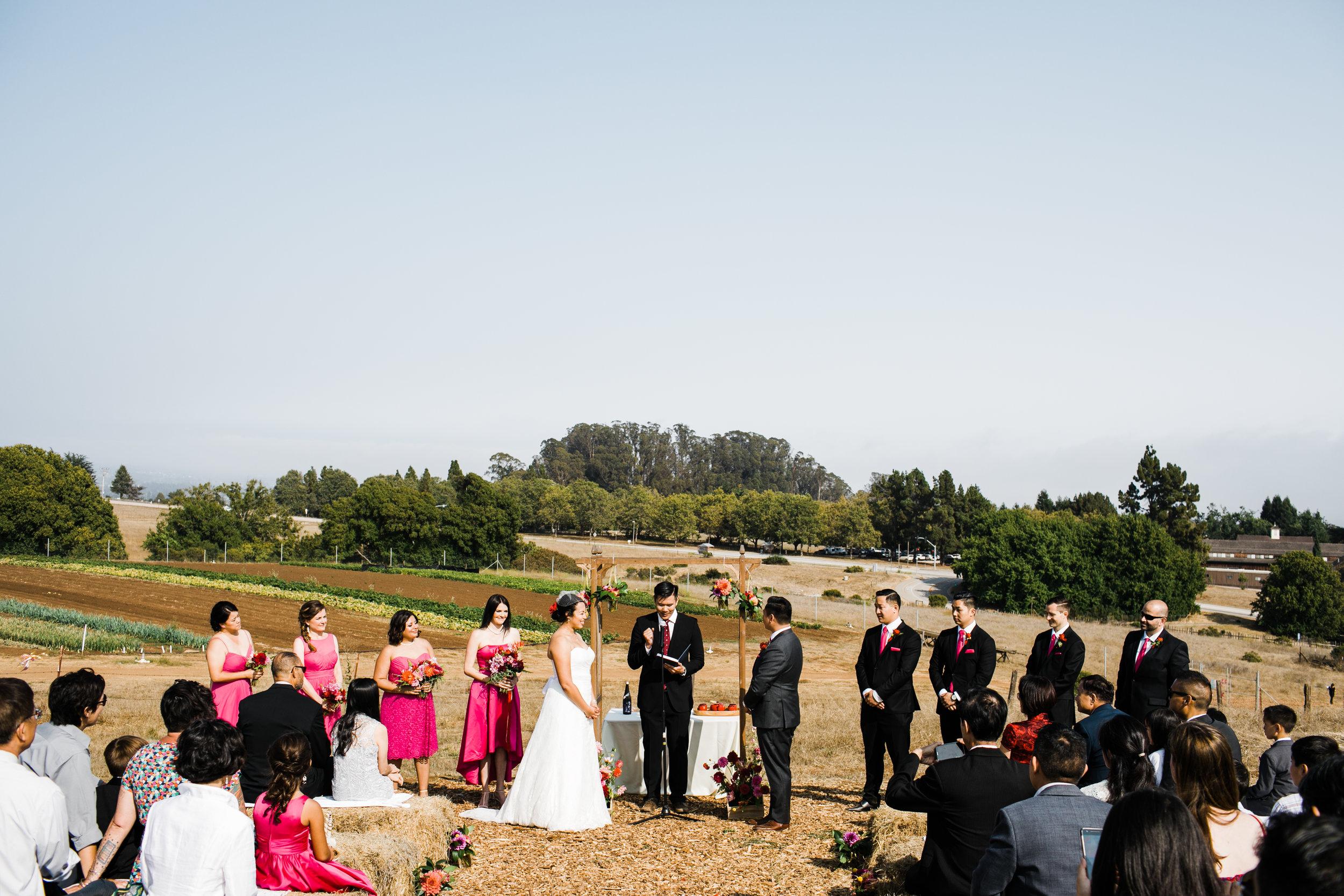 WEDDINGS - Casual to Elaborate.