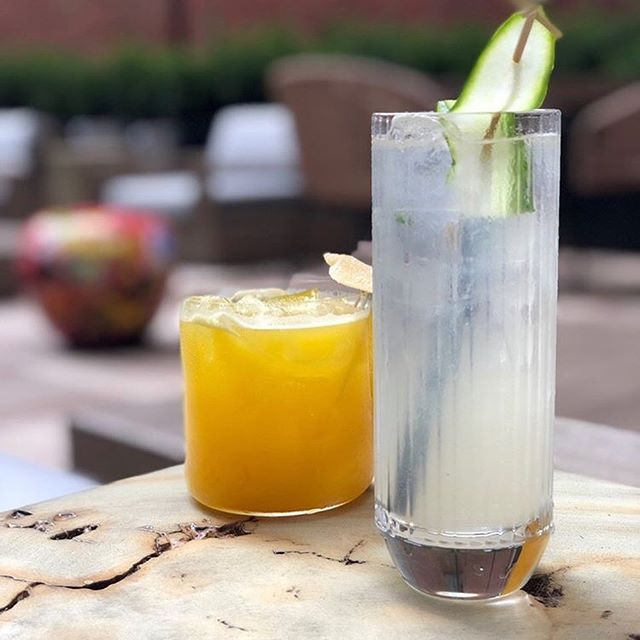 FREE DRINKS & APPS!🤤 TONIGHT (Friday) at 630 Eleanor Members & Friends will be checking out the new hotel, 'Canopy' by Hilton. Are you coming?! DM us as we have a couple spaces left! 🙌🏻