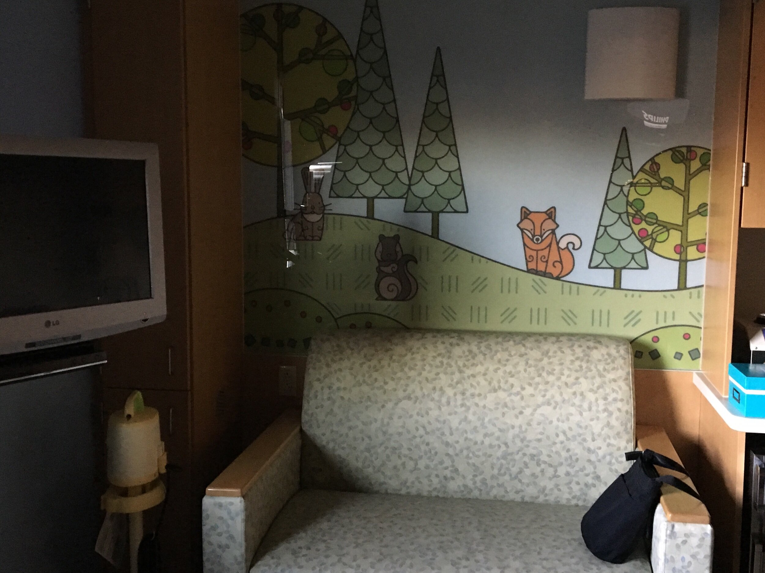 My fold-out bed when I slept with Eva. We sure lucked out with a recently remodeled NICU that has private rooms.