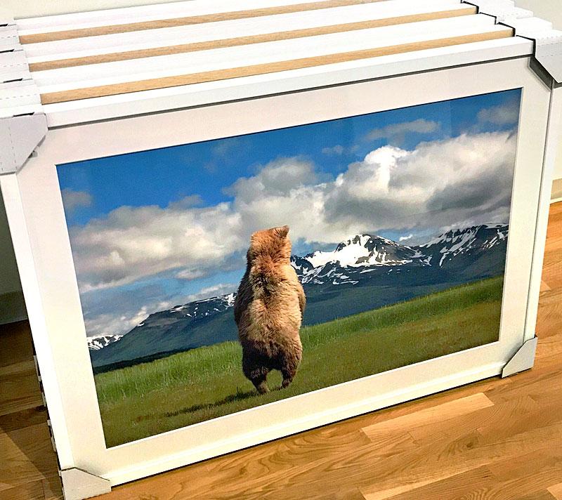 framedprints2.jpg