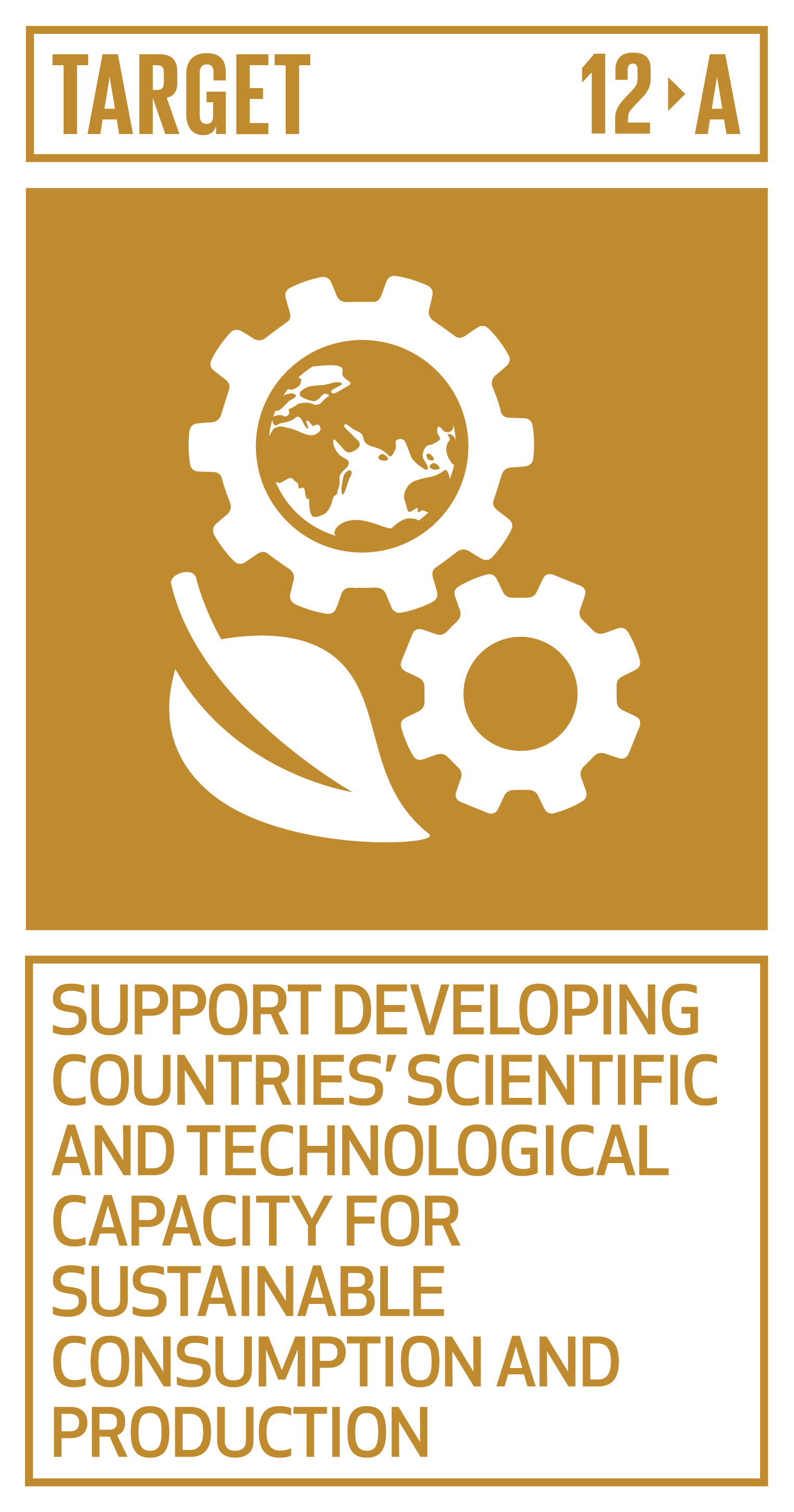 Support developing countries to strengthen their scientific and technological capacity to move towards more sustainable patterns of consumption and production.   INDICATOR    12.a.1  Amount of support to developing countries on research and development for sustainable consumption and production and environmentally sound technologies