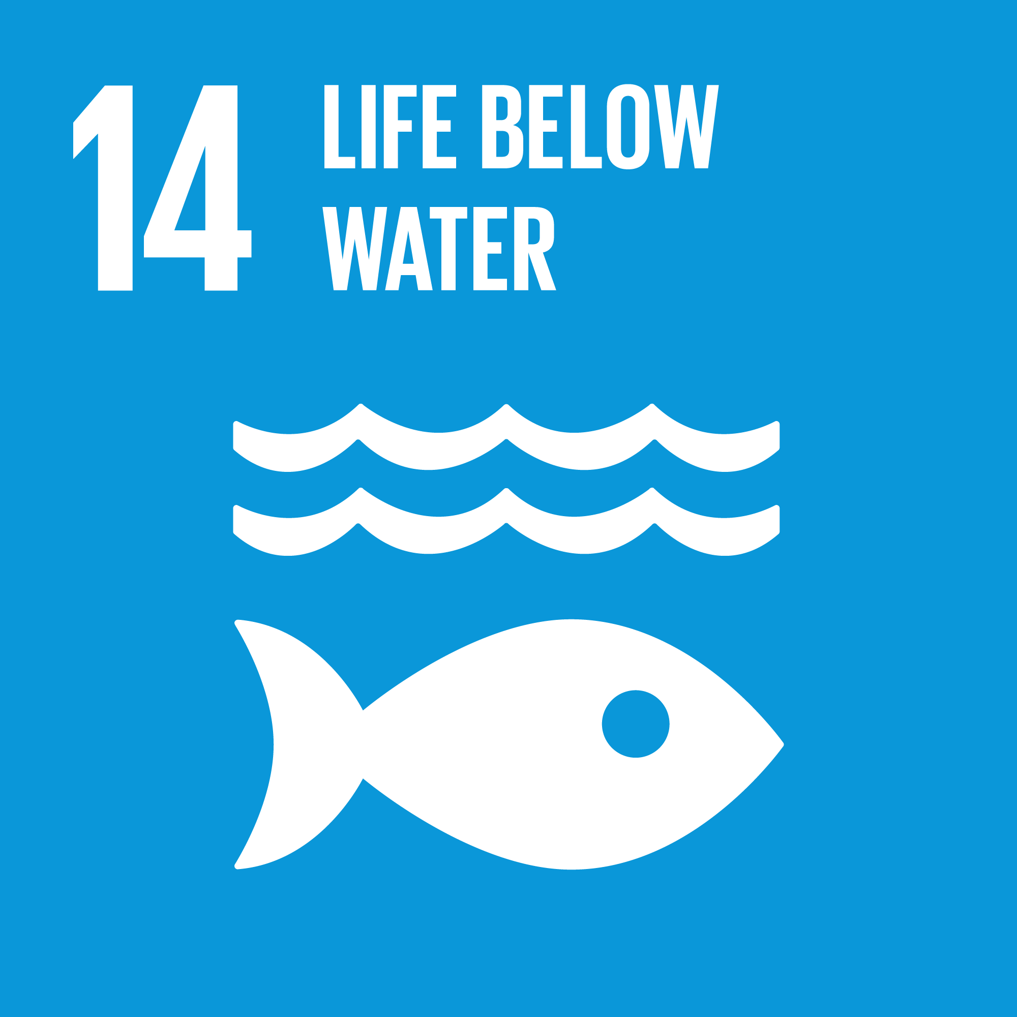 Goal 14. Conserve and sustainably use the oceans, seas and marine resources for sustainable development    10 Targets    10 Indicators