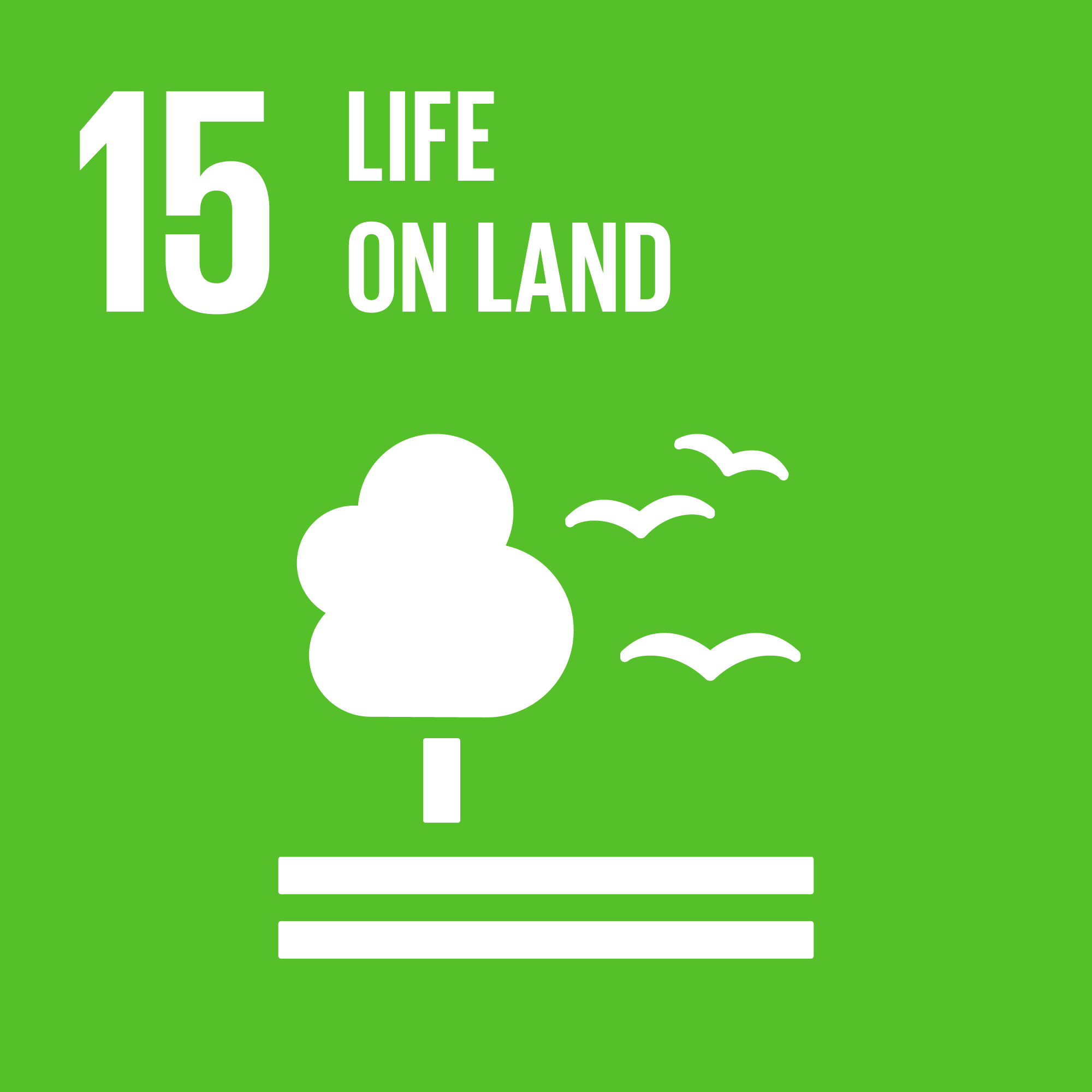 Goal 15. Protect, restore and promote sustainable use of terrestrial ecosystems, sustainably manage forests, combat desertification, and halt and reverse land degradation and halt biodiversity loss    12 Targets    14 Indicators