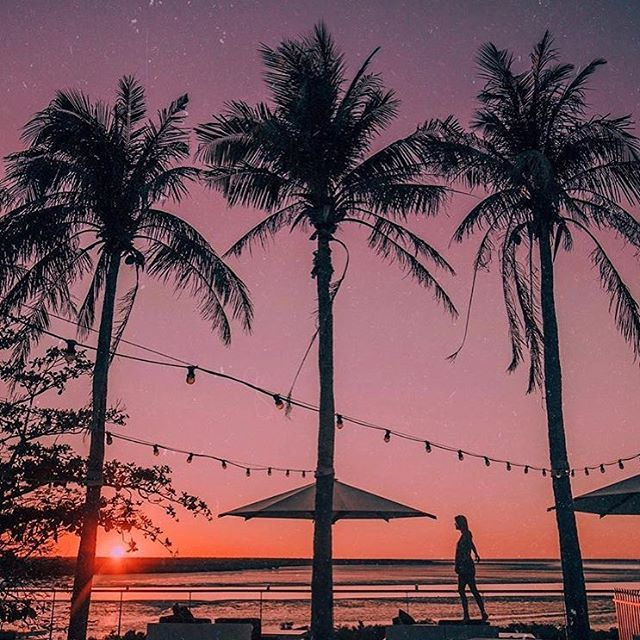 Sunrise beneath the palms 🌴