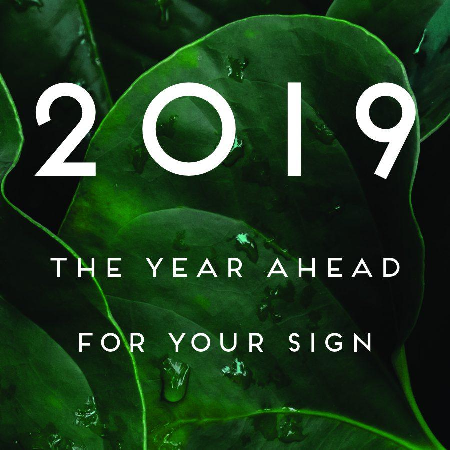 year-ahead-square-square.jpg
