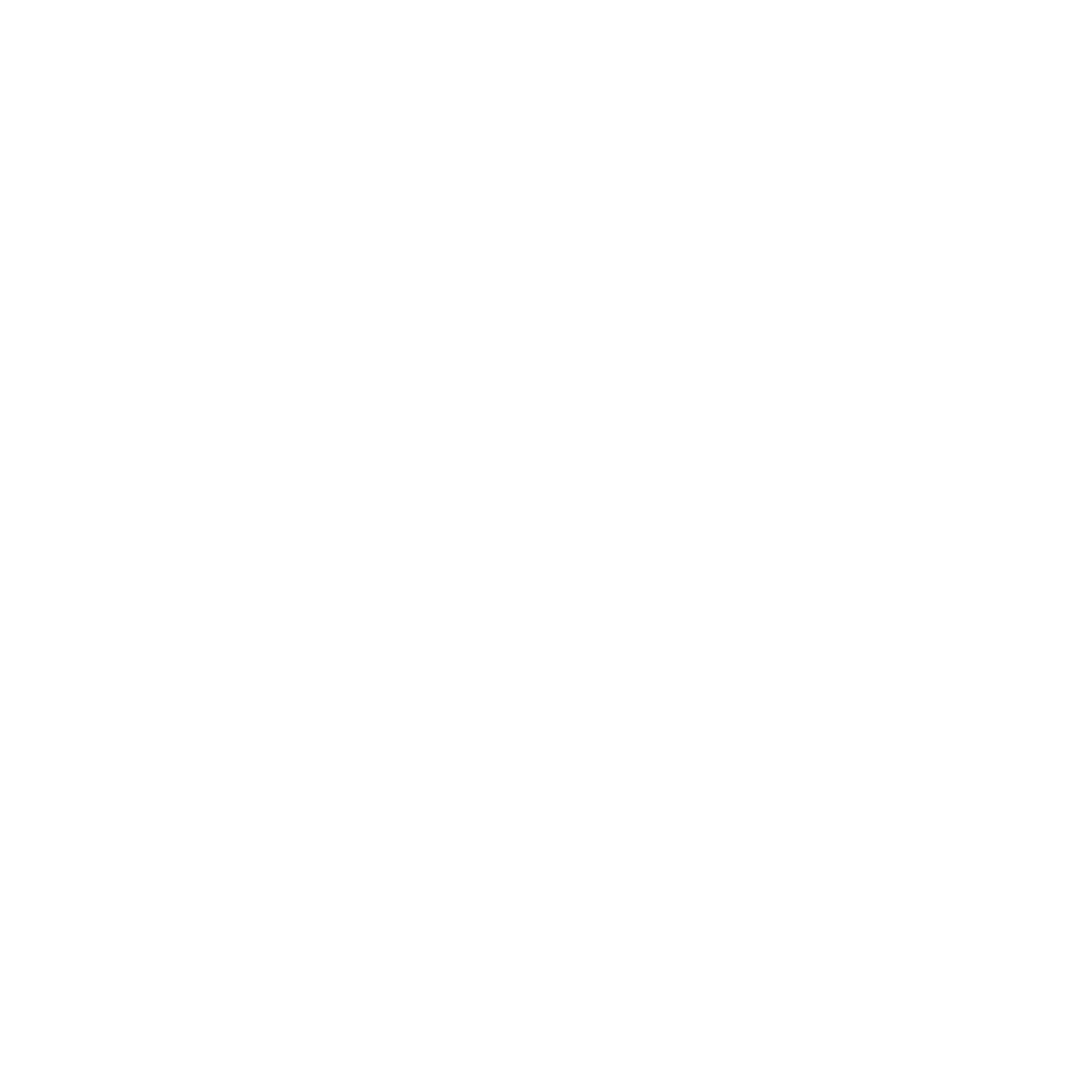 INCON-CaseStudy-2019-Arinex-Sydney-Infographics-Audience.png