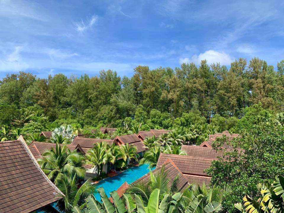 Tropical_surroundings