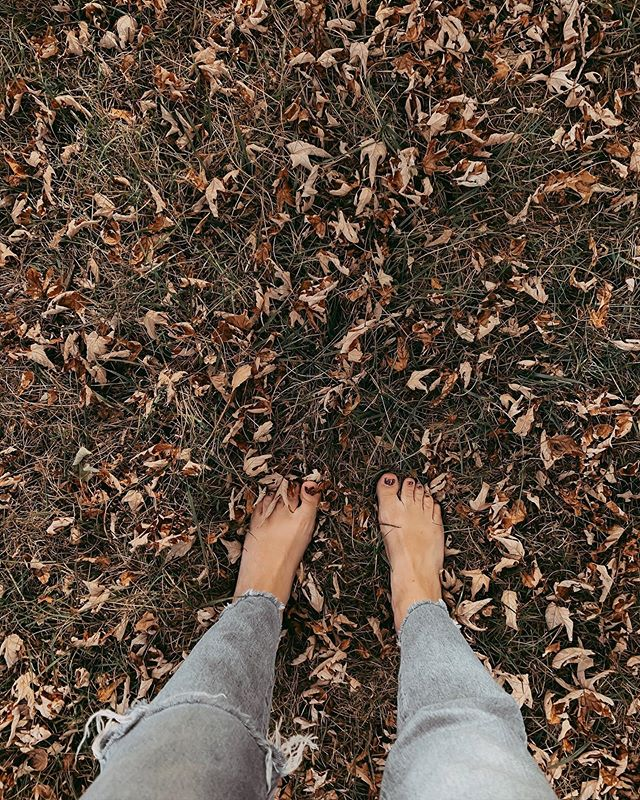 """""""Just know the kingdom of God is within you, even though the battle is bound to continue."""" True Sadness//The Avett Brothers 🍂"""