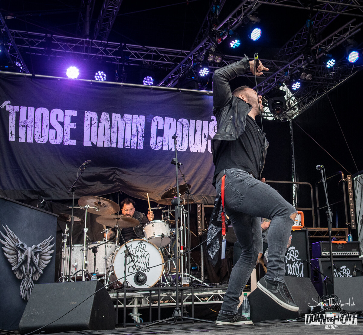 Those Damn Crows-4.jpg