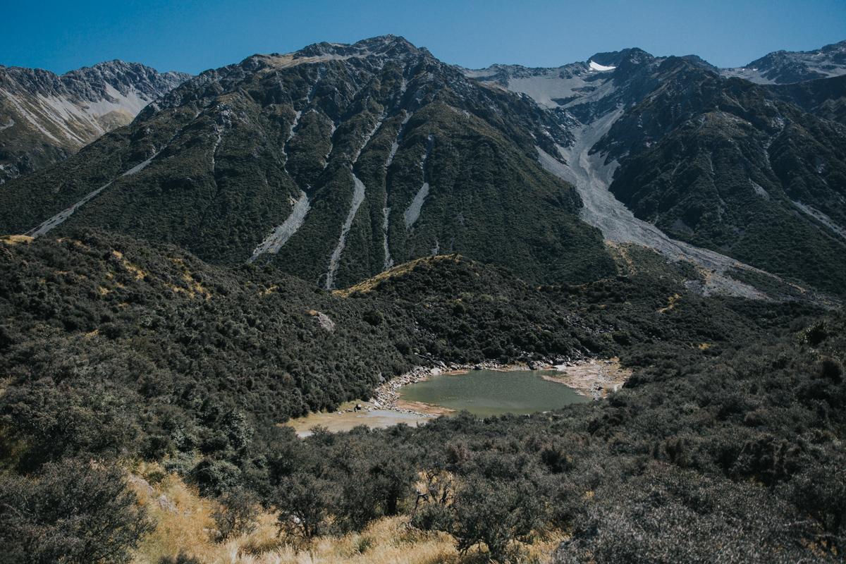 Neuseeland Teil 3 (7 von 265).jpg