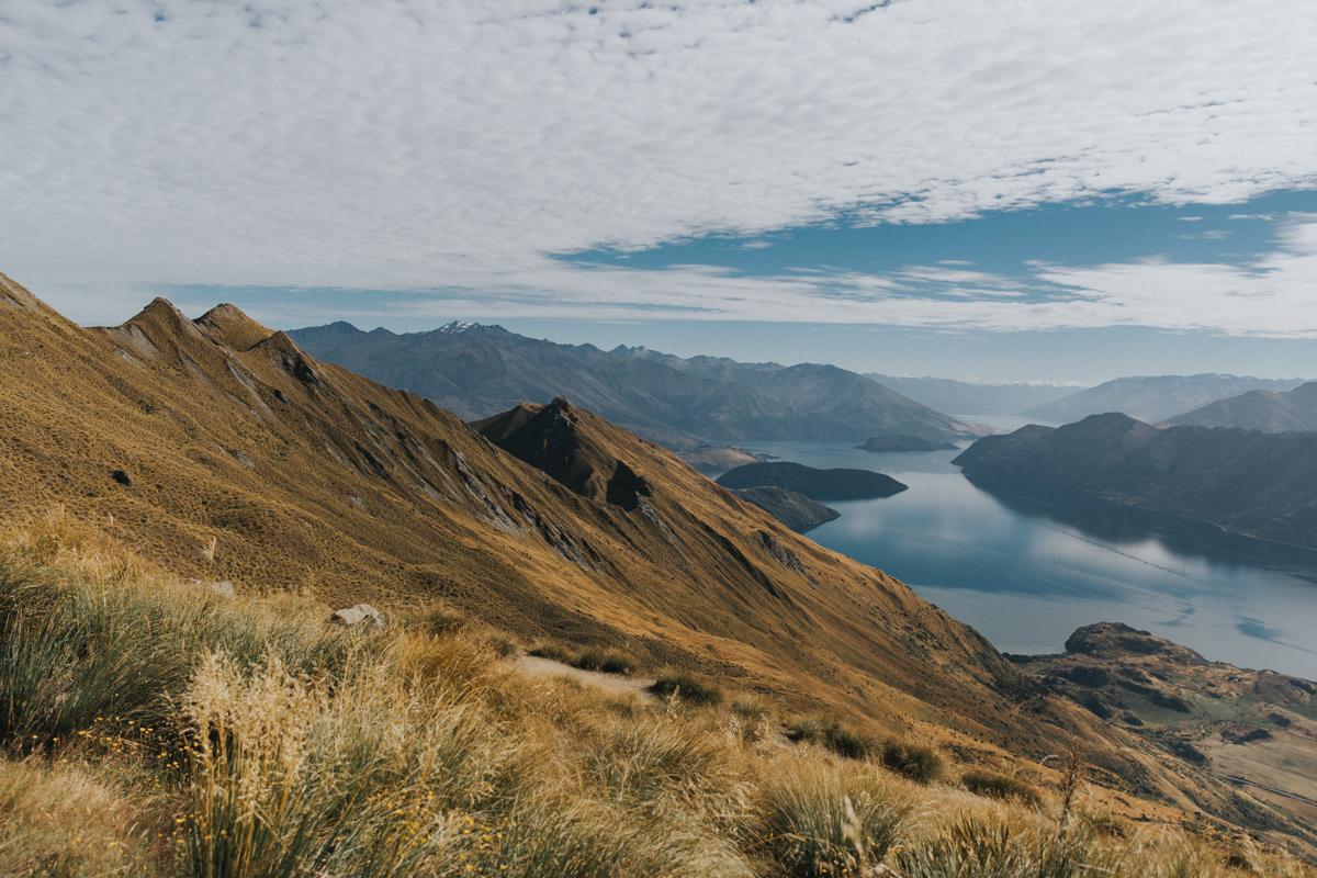 Neuseeland Teil 3 (62 von 265).jpg