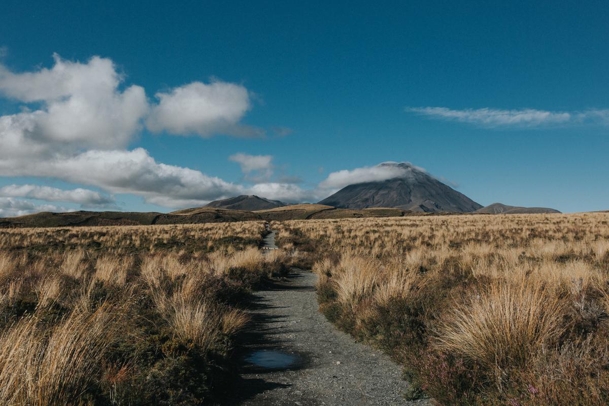 Neuseeland Teil 3 (160 von 265).jpg