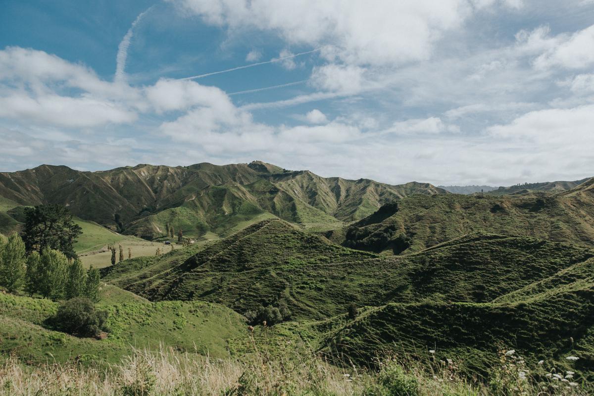 Neuseeland Teil 3 (238 von 265).jpg