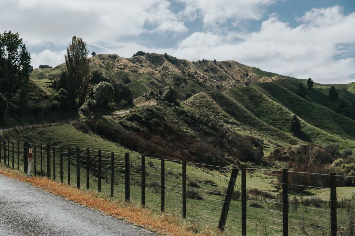Neuseeland Teil 3 (237 von 265).jpg