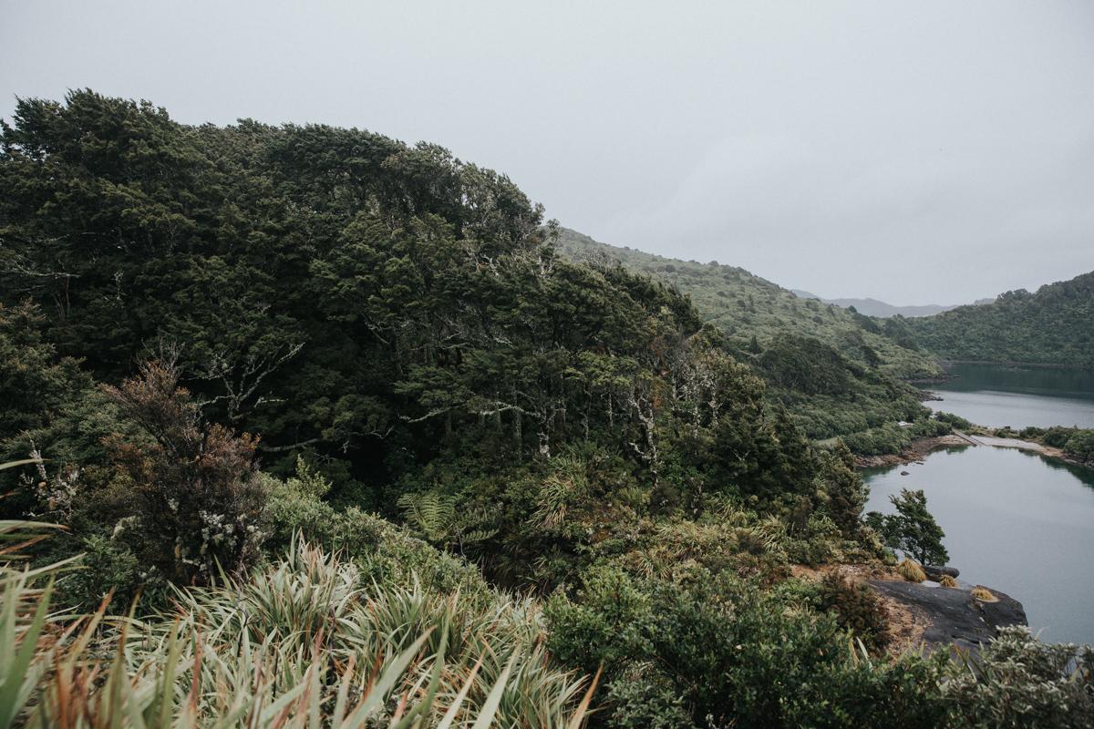 Neuseeland Teil3 (80 von 264).jpg