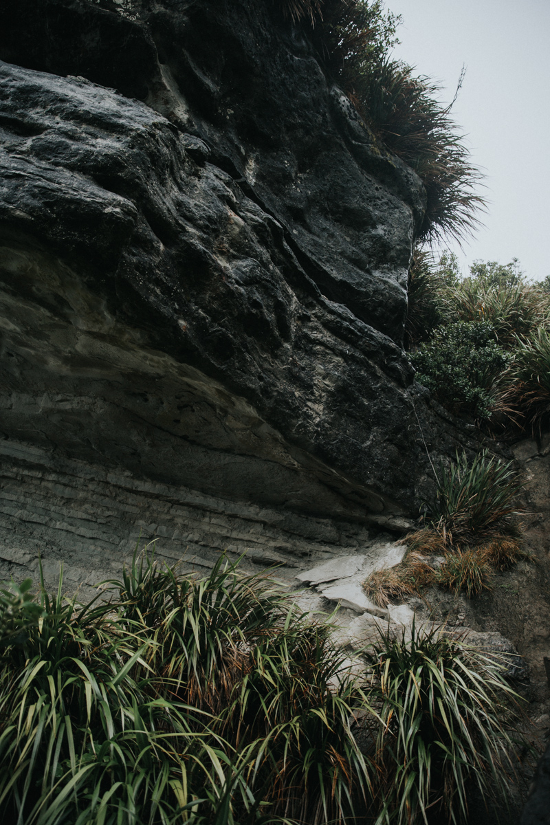 Neuseeland Teil3 (71 von 264).jpg