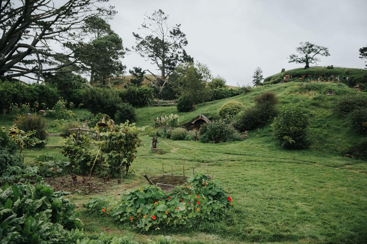 Neuseeland Teil3 (164 von 264).jpg