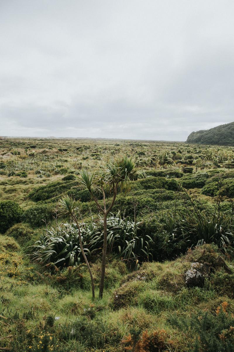 Neuseeland Teil3 (247 von 264).jpg