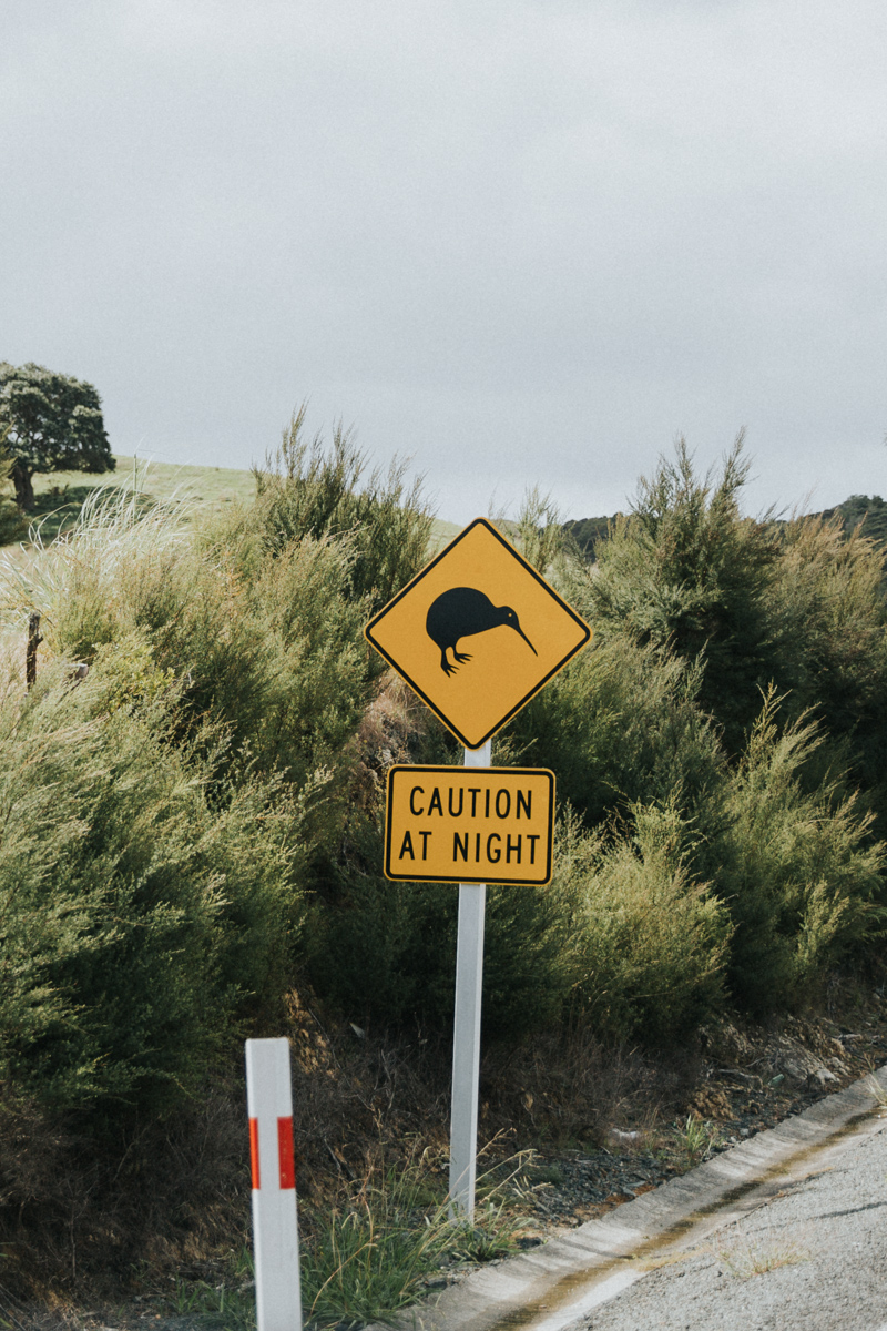 Neuseeland Teil3 (257 von 264).jpg
