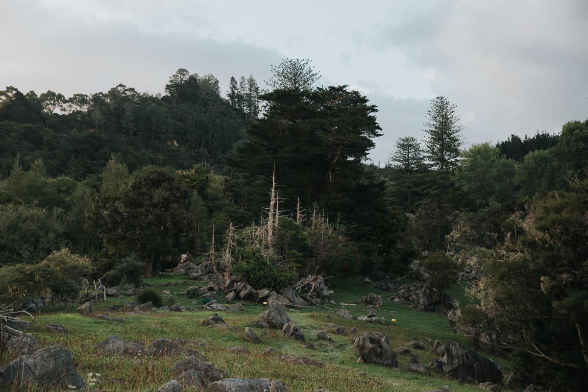 Neuseeland Teil3 (264 von 264).jpg