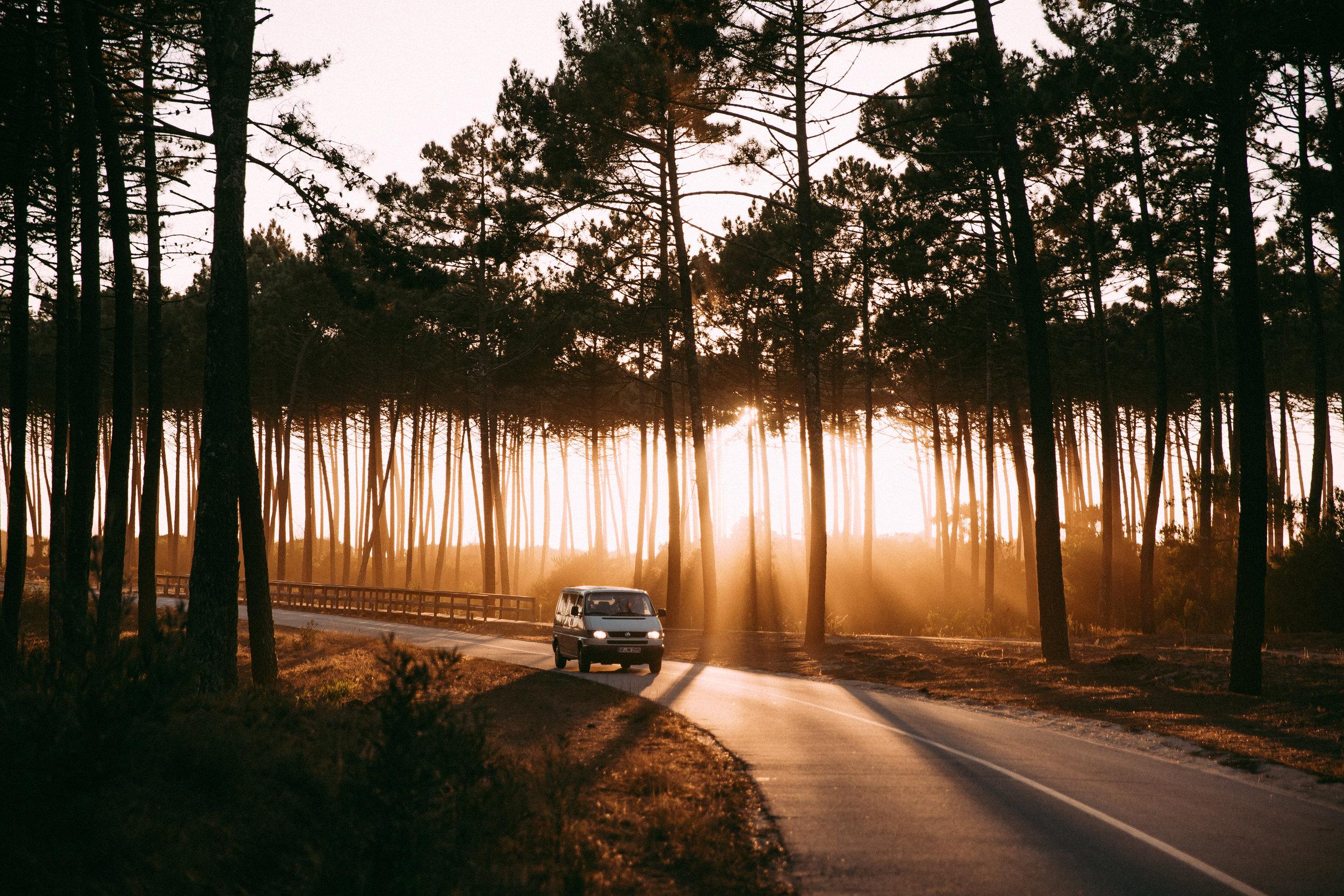 Eddi on the road - Vanlife - Abenteuer - On the road