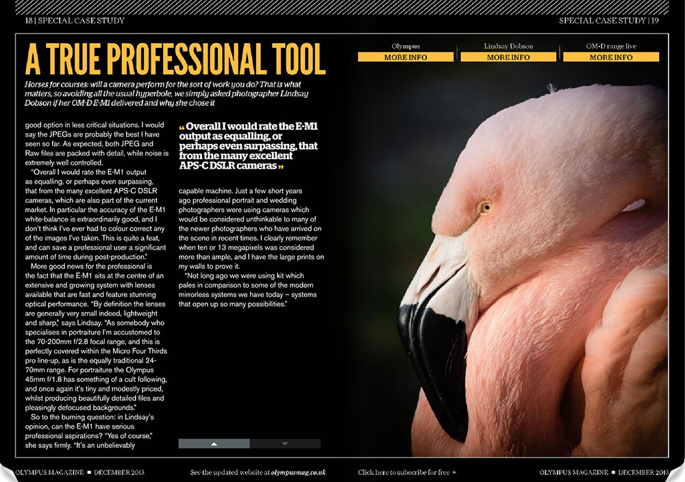 Lindsay Dobson Featured in Olympus Magazine Wildlife Photography