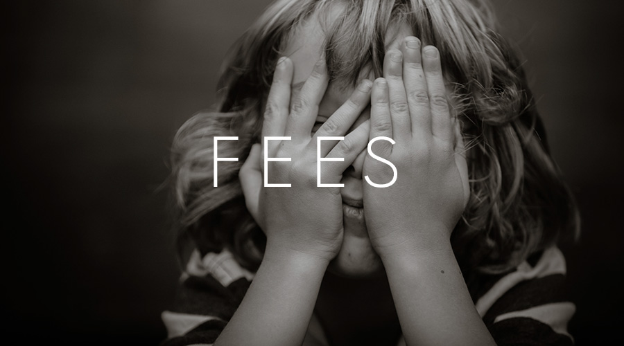 Fees-Button-2.jpg