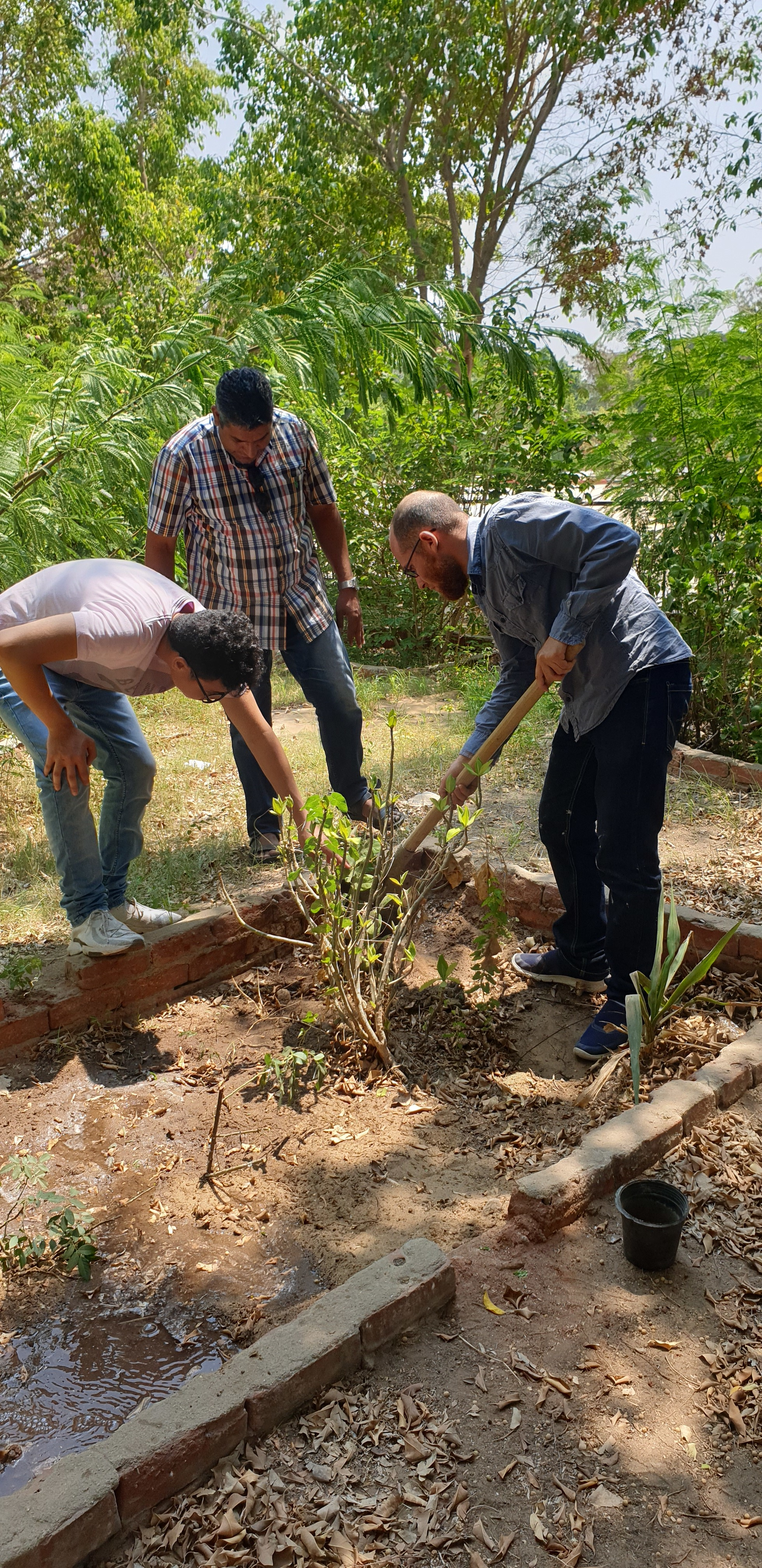 Future Language School - Planting trees.jpg