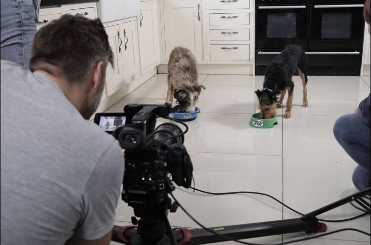 Copy of Lilly and Fluke on set