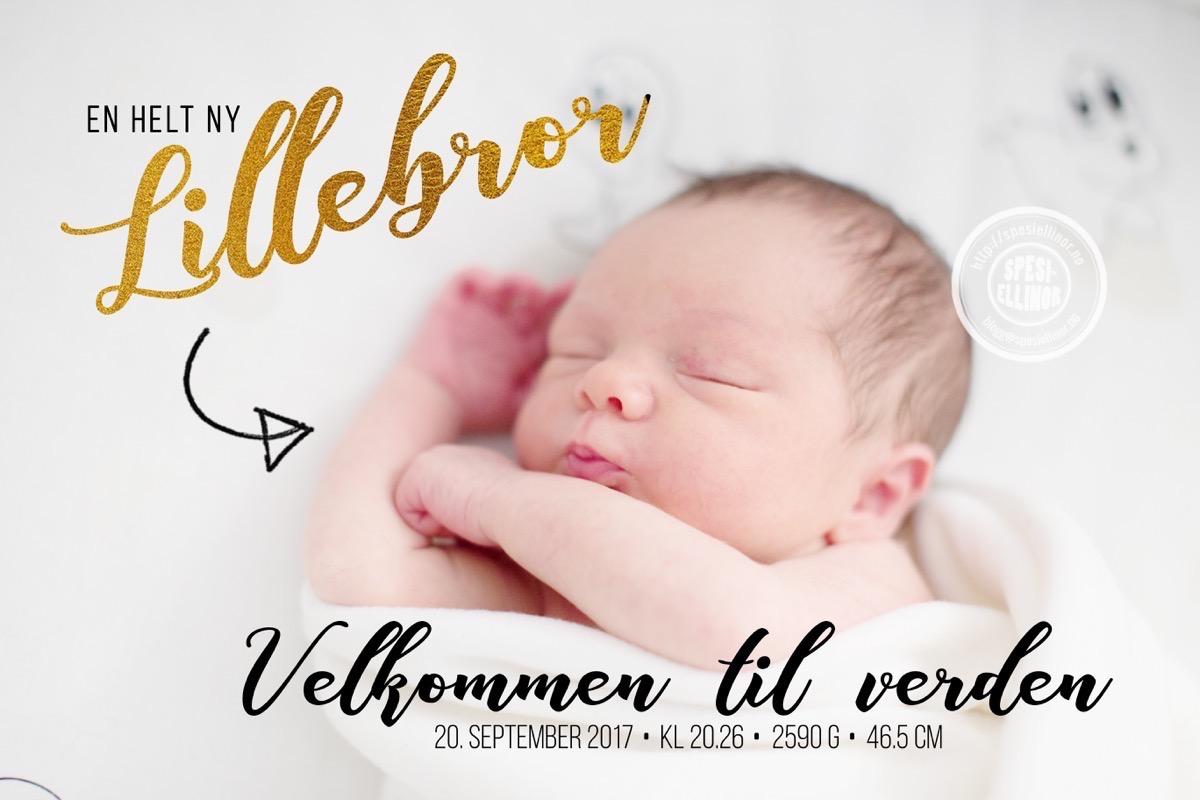 fødselsannonsering-facebook.jpg