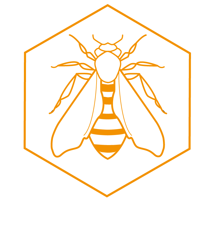 ARTWORK OPEN CALL:   Exhibit with The Beehive: make a bee in any medium and post it to us before August 31st and your artwork will be exhibited in the Beehive as it tours!   Read the submission details here (best viewed on a computer)