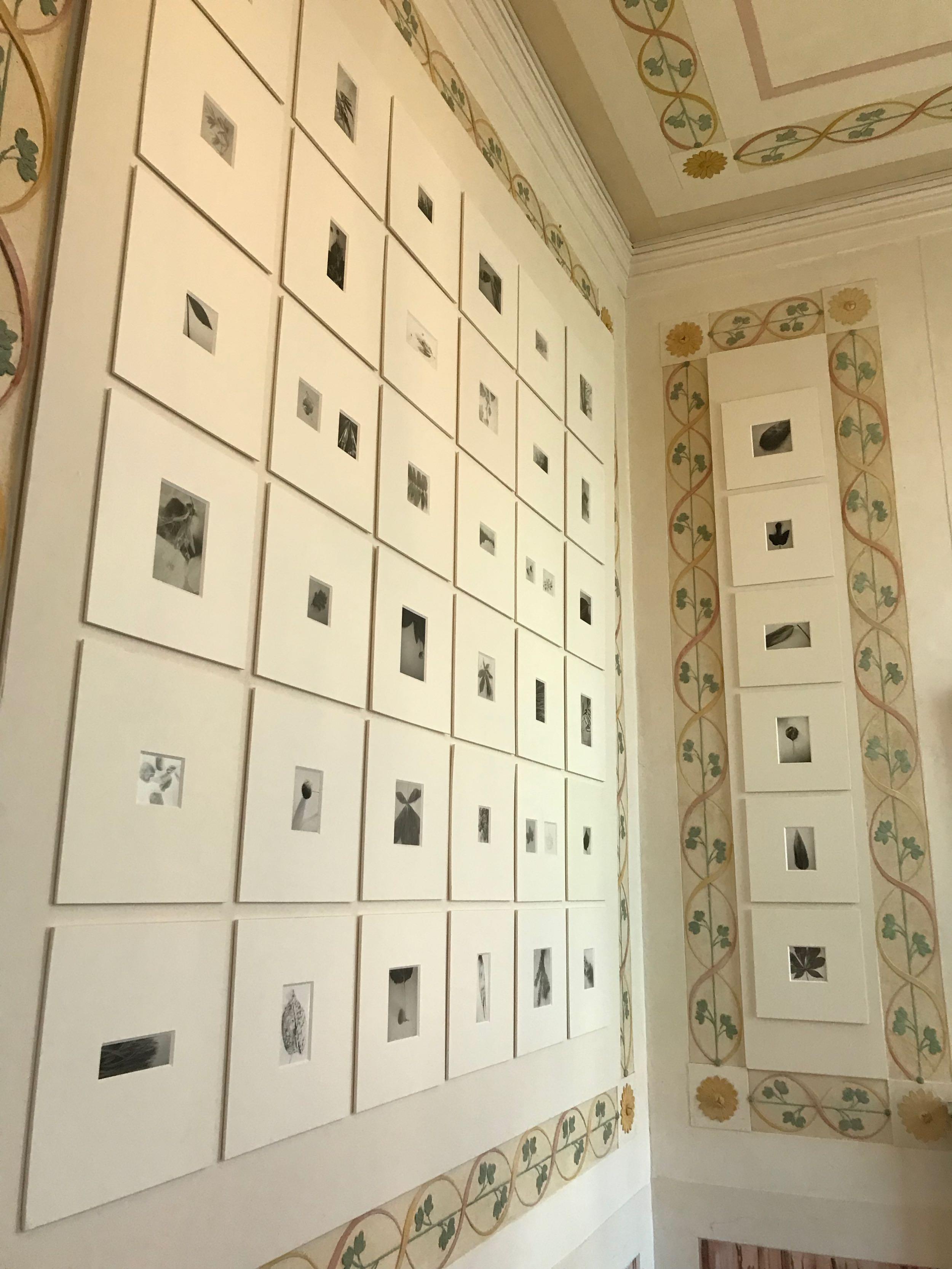 Mariateresa Sartori, pinhole camera photographs at the Fondazione Querini Stampalia, Venice