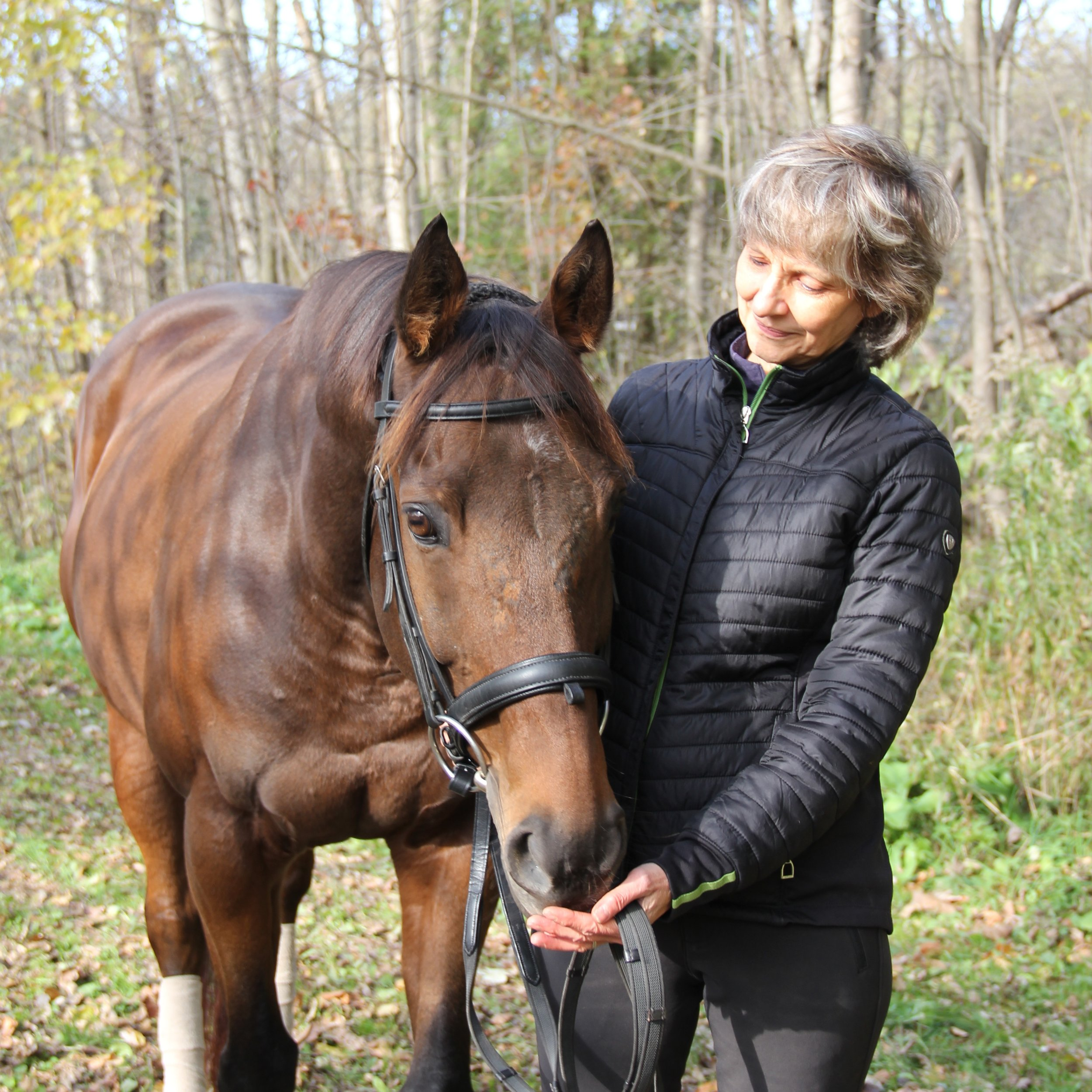 """Louise Spilsbury - """"My TB Larry has had monthly bodywork sessions from Leslie for half a year now. She has identified areas of tension and pain in him that I wasn't aware of, and through gentle touch and manipulation has made ongoing progress in relieving his discomfort. I see an improvement in his way of going and his overall demeanour after every session. And he enjoys his treatments! He instantly relaxes and starts to yawn when she works on him.""""Read more about Louise"""